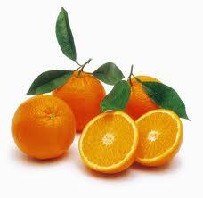 Στους Δρόμους της Ελιάς και τηςΠορτοκαλιάς