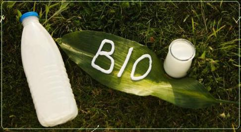 bio40033