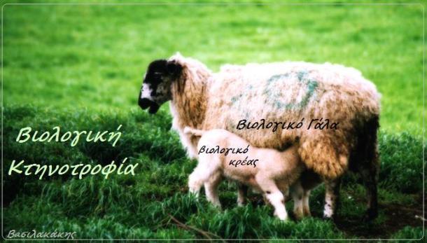 biologika-zoa