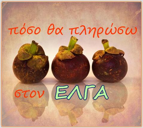elga500