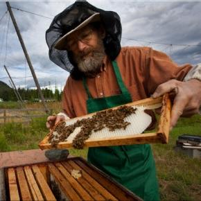 Μαθήματα Μελισσοκομίας στηνΔράμα
