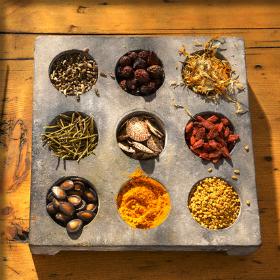 Σεμινάρια Μελισσοκομίας, Αρωματικών Φυτών, Σαλιγκαροτροφίας