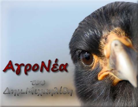 agronea2012c