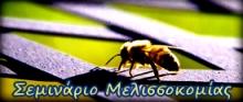 meli200