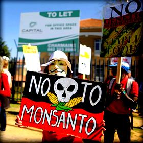 Monsanto: Η βιοτεχνολογία σε λάθοςχέρια
