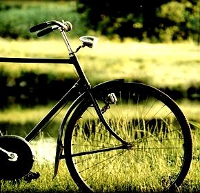 Ζωή σαν ποδήλατο